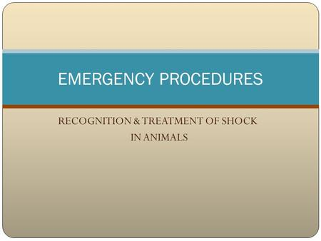 RECOGNITION & TREATMENT OF SHOCK IN ANIMALS EMERGENCY PROCEDURES.