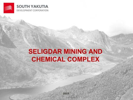SELIGDAR MINING AND CHEMICAL COMPLEX 2015. PROJECT GOAL The project goal is creating on the basis of the Seligdar apatite deposit of a contemporary mining.