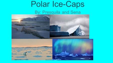 Polar Ice-Caps By: Presquila and Sena.