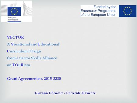 VECTOR A Vocational and Educational Curriculum Design from a Sector Skills Alliance on TOuRism Grant Agreement nr. 2015-3230 Giovanni Liberatore – Università.