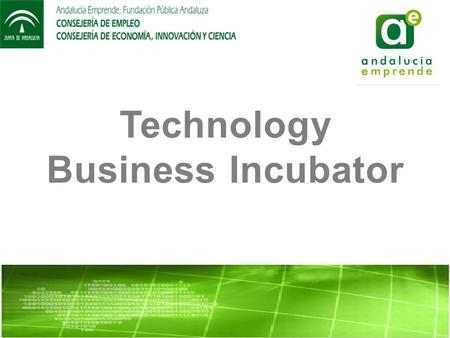 Technology Business Incubator. WHO WE ARE? The mission of the Technological Business Incubator (TBI) is to host Technology- Based Innovative Enterprises.