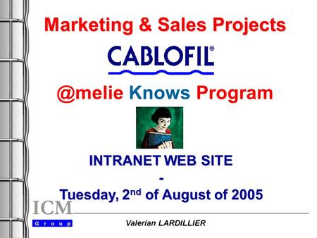 Marketing & Sales Projects Marketing & Sales Knows Program INTRANET WEB SITE - Tuesday, 2 nd of August of 2005 Valerian LARDILLIER.
