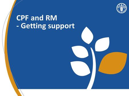 CPF and RM - Getting support. An overview Quality assurance and support mechanism Available guidelines and tools Communication tools and database.