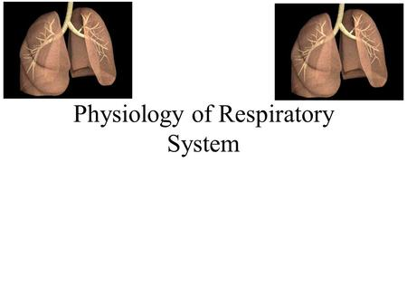 Physiology of Respiratory System. Respiration Pulmonary ventilation –Breathing- air movement in and out of body External respiration –Oxygen loading and.