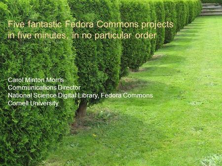 Five fantastic Fedora Commons projects in five minutes, in no particular order Carol Minton Morris Communications Director National Science Digital Library,