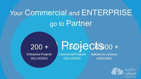 150 +6 000 + 350 Projects 200 + Commercial Projects DELIVERED Salesforce Licenses ASSIGNED Enterprise Projects DELIVERED Your Commercial and ENTERPRISE.