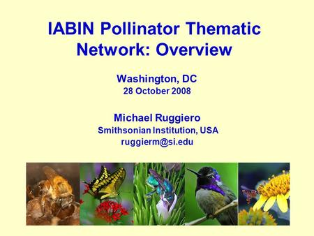 IABIN Pollinator Thematic Network: Overview Washington, DC 28 October 2008 Michael Ruggiero Smithsonian Institution, USA