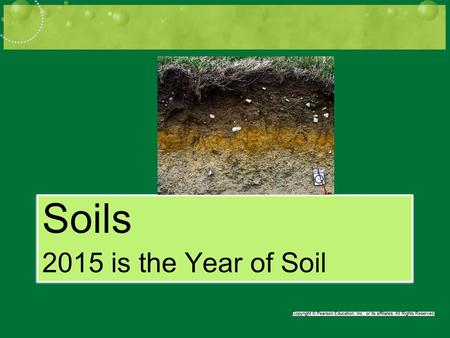 Soils 2015 is the Year of Soil Soils 2015 is the Year of Soil.
