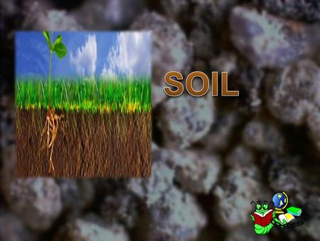 Soil is made of loose, weathered rock and organic material.