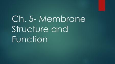 Ch. 5- Membrane Structure and Function. Components of the Plasma Membrane  Phospholipid bilayer  Protein Molecules that are either partially or wholly.