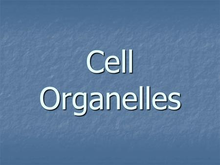 Cell Organelles. organelle organelle - structures within a cell that have certain jobs to do for the cell. organelle - structures within a cell that have.