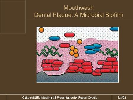 5/8/08Caltech iGEM Meeting #3 Presentation by Robert Ovadia Mouthwash Dental Plaque: A Microbial Biofilm.
