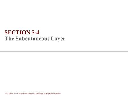 Copyright © 2004 Pearson Education, Inc., publishing as Benjamin Cummings SECTION 5-4 The Subcutaneous Layer.