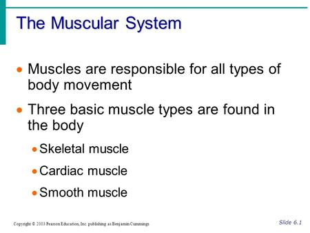 The Muscular System Slide 6.1 Copyright © 2003 Pearson Education, Inc. publishing as Benjamin Cummings  Muscles are responsible for all types of body.