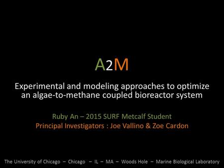 A2MA2M Experimental and modeling approaches to optimize an algae-to-methane coupled bioreactor system Ruby An – 2015 SURF Metcalf Student Principal Investigators.