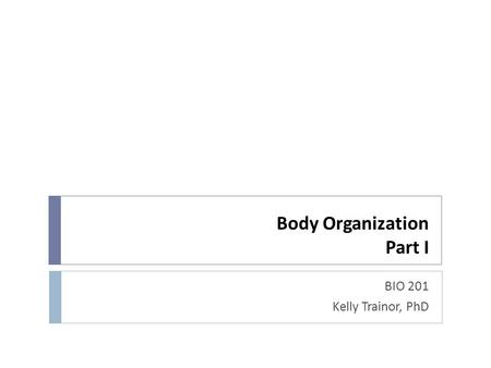Body Organization Part I BIO 201 Kelly Trainor, PhD.