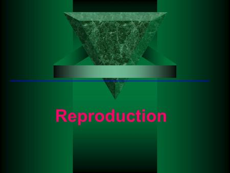Reproduction. Human Reproduction Puberty Rules during presentation The students should keep a journal. When you see this symbol students should use their.