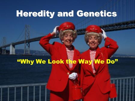 "Heredity and Genetics ""Why We Look the Way We Do""."