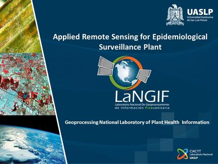 Applied Remote Sensing for Epidemiological Surveillance Plant Geoprocessing National Laboratory of Plant Health Information.