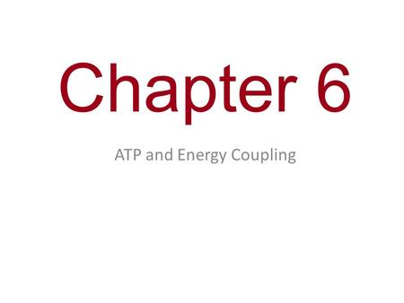 Chapter 6 ATP and Energy Coupling.  G  0  G  0 Equilibrium = Death At equilibrium, forward and reverse reactions occur at the same rate; it is a state.