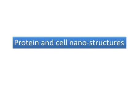 Protein and cell nano-structures. Electron Carriers Function in Multienzyme Complexes The electron carriers of the respiratory chain are organized into.