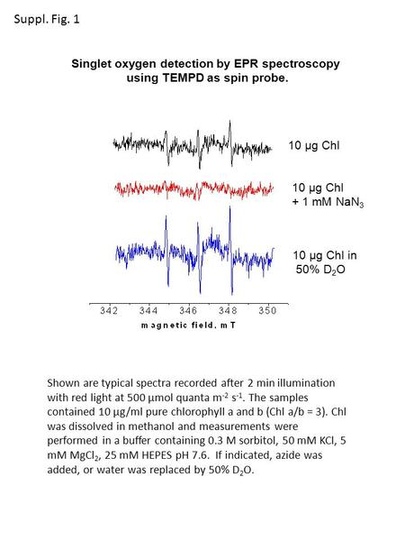 10 µg Chl + 1 mM NaN 3 10 µg Chl in 50% D 2 O Singlet oxygen detection by EPR spectroscopy using TEMPD as spin probe. Shown are typical spectra recorded.