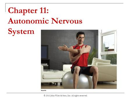 Chapter 11: Autonomic Nervous System © 2013 John Wiley & Sons, Inc. All rights reserved.