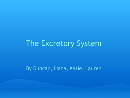 The Excretory System By Duncan, Liana, Katie, Lauren.