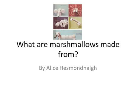 What are marshmallows made from?