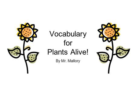 Vocabulary for Plants Alive! By Mr. Mallory store When you store something, you keep it until you need it.