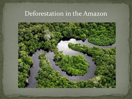Deforestation in the Amazon. Forests in the Amazon Basin are cut illegally. This alarmed the authorities in Brazil. For the last seven months in the area.