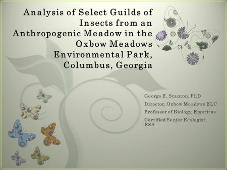 7 Analysis of Select Guilds of Insects from an Anthropogenic Meadow in the Oxbow Meadows Environmental Park, Columbus, Georgia.