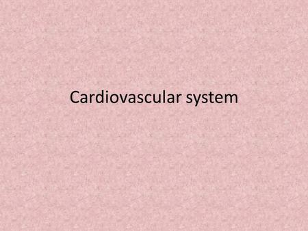 Cardiovascular system. Fully Formed by the 4 th Week of embryonic development.