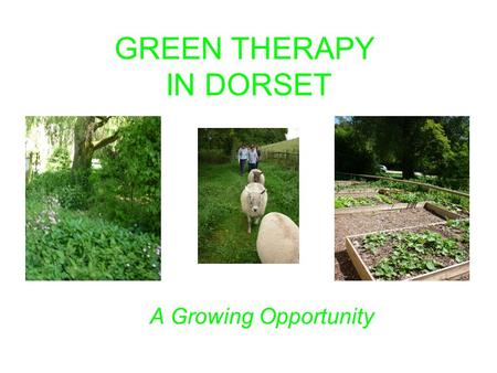GREEN THERAPY IN DORSET A Growing Opportunity. What is green therapy? Using the outdoor rural environment as a therapeutic tool to improve mental and.