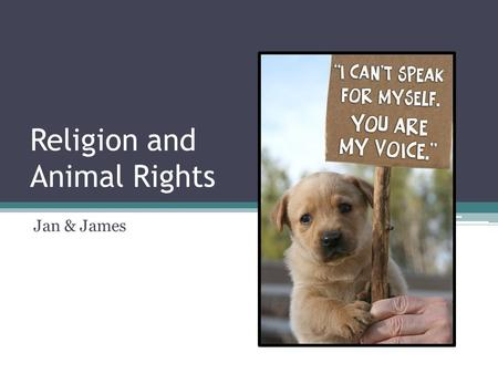 Religion and Animal Rights Jan & James. Key Terms Stewardship Dominion Sanctity of Life Vegetarianism/ Veganism Extinction Vivisection Genetic Modification.