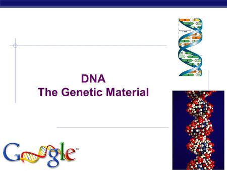 AP Biology DNA The Genetic Material AP Biology Scientific History  The march to understanding that DNA is the genetic material  T.H. Morgan (1908)