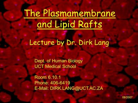 The Plasmamembrane and Lipid Rafts 08/2007 Lecture by Dr. Dirk Lang Dept. of Human Biology UCT Medical School Room 6.10.1 Phone: 406-6419