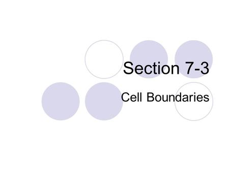 Section 7-3 Cell Boundaries. Plasma Membrane or Cell Membrane The boundary between the cell and its environment. Controls what enters and leaves the cell.