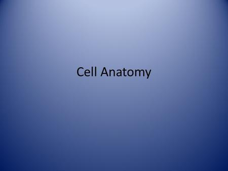 Cell Anatomy.