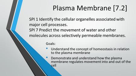 Plasma Membrane [7.2] Goals: Understand the concept of homeostasis in relation to the plasma membrane Demonstrate and understand how the plasma membrane.