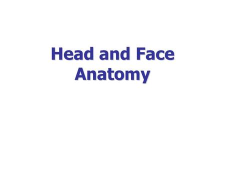 Head and Face Anatomy. The soft tissue that covers the vault of skull Extends from supraorbital margin to superior nuchal line.
