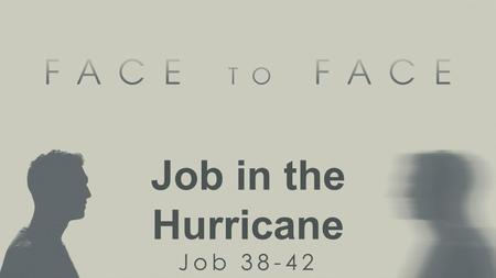 Job in the Hurricane Job 38-42. Theophany: a face-to-face encounter with God.