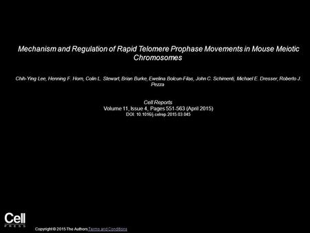 Mechanism and Regulation of Rapid Telomere Prophase Movements in Mouse Meiotic Chromosomes Chih-Ying Lee, Henning F. Horn, Colin L. Stewart, Brian Burke,