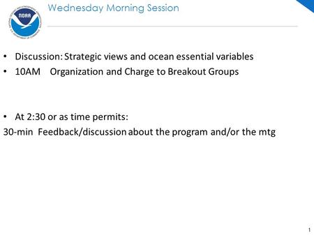 Discussion: Strategic views and ocean essential variables 10AM Organization and Charge to Breakout Groups At 2:30 or as time permits: 30-min Feedback/discussion.