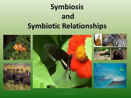 Symbiosis and Symbiotic Relationships