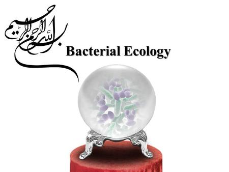 Bacterial Ecology. Definition - Relation between bacteria and non-living environment - Relation between bacteria and other living organisms - Relation.
