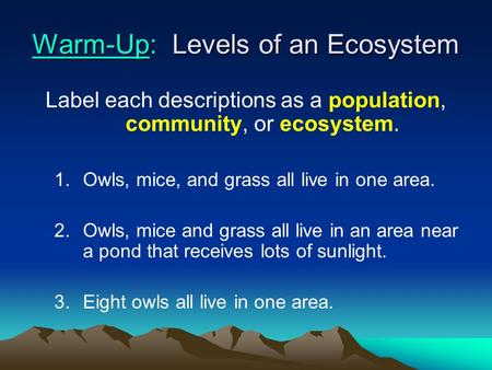 Warm-Up: Levels of an Ecosystem Label each descriptions as a population, community, or ecosystem. 1.Owls, mice, and grass all live in one area. 2.Owls,