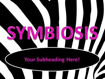 Your Subheading Here!. Symbiosis: long-terminteractive A long-term, interactive relationship between two different organisms.