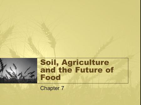 Soil, Agriculture and the Future of Food