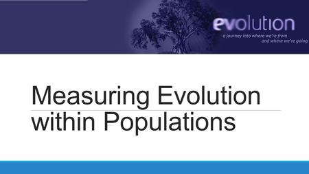 Measuring Evolution within Populations. 5 agents of evolutionary change Mutation Gene Flow Genetic Drift Selection Non-random mating MigrationSexual Selection.